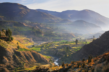 Photo Blinds Canyon View of Colca Canyon with morning fog in Peru