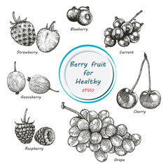 Berry fruit vector set black and white