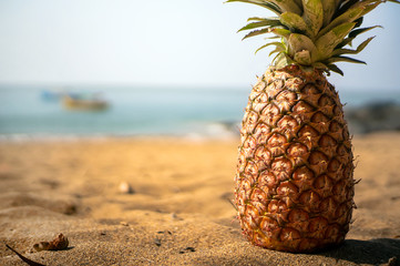 pineapple close up lying on a sandy beach against
