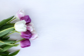 flowers in pastel colors/ bouquet of tender tulips on a light wooden surface