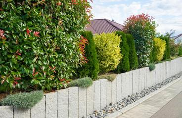 Gartenmauer mit unterschiedlicher Bepflanzung