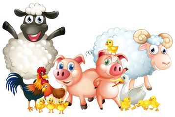 Many types of farm animals