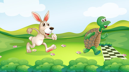 Rabbit and turtle in the race