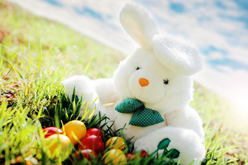 Colorful Easter eggs and bunny in a grass