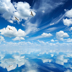 Blue sea and sky, white clouds, sunny weather, three seagulls flying over sea