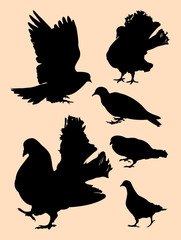Pigeon, dove detail silhouette 02. Good use for symbol, logo, mascot, web icon, sign, or any design you want.