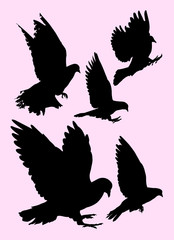 Pigeon, dove detail silhouette 01. Good use for symbol, logo, mascot, web icon, sign, or any design you want.