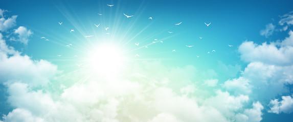 Birds flight in rising sun