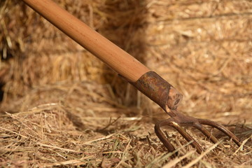 herramientas del campo