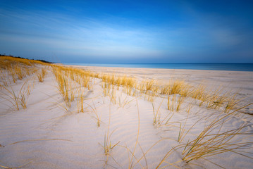 Grass, white sand dunes beach in the morning on the shore of the Baltic Sea. Poland.