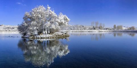 gölet içinde adacık ve ağacın suya yansıması