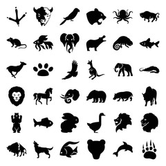 Set of 36 wild filled icons