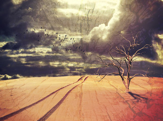 Surreal apocalyptic desert landscape with dead tree, vehicle tracks and birds under a dramatic stormy sky. Drought and climate change concepts. Grunge, wood textured digital photo manipulation.  Wall mural