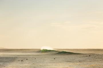 Morning Surf in Australia