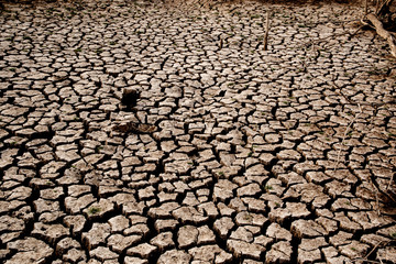 Drought and cracked clay ground in the dry season