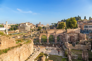 Rome, Italy. The ruins of Roman Forum: Column of Phocas, Temple of Antoninus and Faustina, Honored Columns, Sacred Road, Temple of Castor and Pollux, Basilica of Julius, Palatine Hill