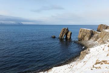 rocky coastline of northern Iceland