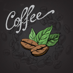 poster coffee grains and leaves in graphic style hand-drawn vector illustration.