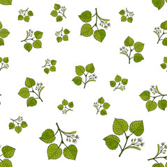Seamless vector pattern with linden branches