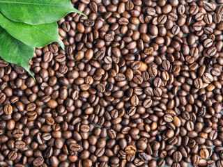 Roasted coffee beans background with green leaves, captured from top view with sharp focus