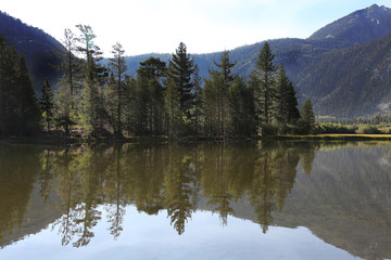 Wall Mural - Peaceful Mountain Lake and Trees Reflection in Sierra Nevada Mountains, California