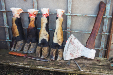 Butcher ax, knifes and bull hooves