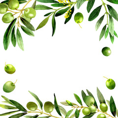 Olive tree frame in a watercolor style isolated.