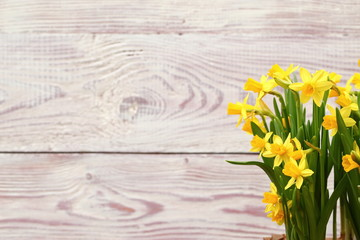 Simple composition with daffodils.