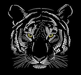 Muzzle of a tiger