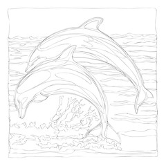 beautiful dolphins line art continuous line drawing