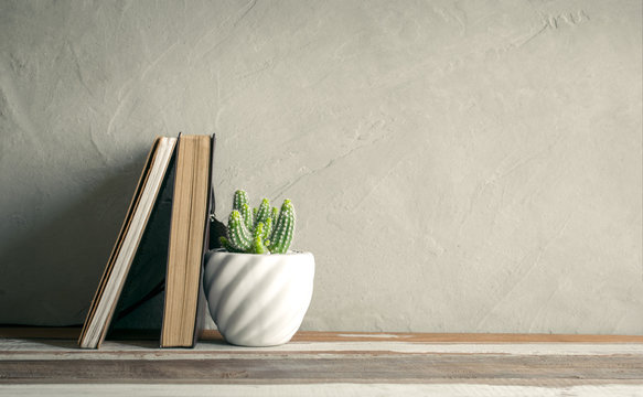 cactus flower with notebook on wood table modern interior background concept.