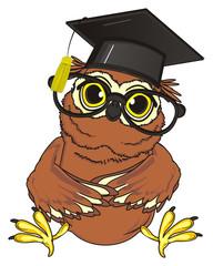 animal, bird, fly, night, owl, beak, smart, cartoon, sit, funny, claws, mind, brown, yellow eyes,  study, education, glasses, school, hat, black