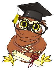 animal, bird, fly, night, owl, beak, smart, cartoon, sit, funny, claws, mind, brown, yellow eyes, study, education, glasses, school, hat, black, paper, diploma