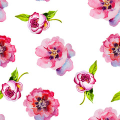 Pink blooming peony watercolor.Seamless pattern