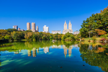 Central park at Autumn sunny day, New York City