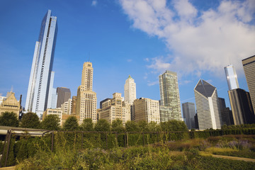 Fotomurales - Autumn in Chicago