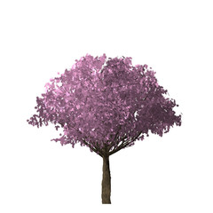 Pink Tree of computer graphics.