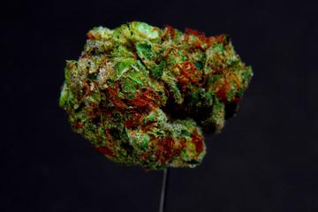 Close up of Blue Dream medical marijuana bud