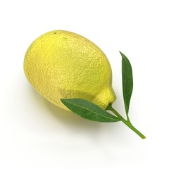 Lemon with leaves on white. 3D illustration