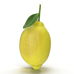 Lemon. Fruit with leaves isolated on white. 3D illustration