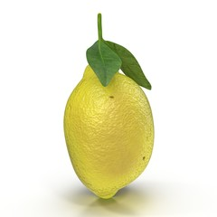 One ripe lemon with leaves on white. 3D illustration