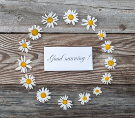 Morning greeting, meadow flowers, daisies on a wooden background. Decorative, summer Postcard and poster