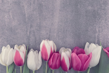Frame of tulips onstone background with copy space for message. Spring flowers. Greeting card for Valentine's Day, Woman's Day and Mother's Day. Top view