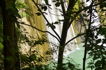 Trees and waterfalls in the forest photo