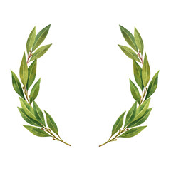 Watercolor Bay leaf wreath isolated on white background.
