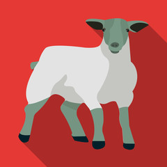 Little white mountain sheep.Scottish fold sheep.Scotland single icon in flat style vector symbol stock illustration.