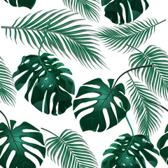 Tropical palm leaves. Jungle thickets. Seamless floral background. Isolated on white. illustration