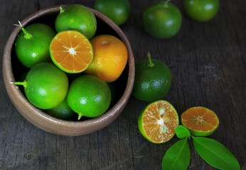 Fresh Citrus calamondin fruit
