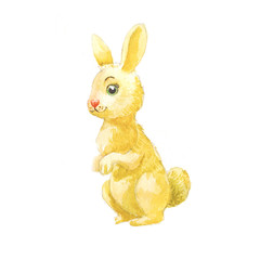 Cute bunny, illustration with watercolor, drawing for a sticker, print on fabric, wallpaper