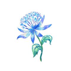 Magic blue flower